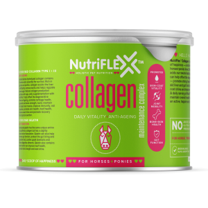 Nutriflex Maintenance For Horses 500g